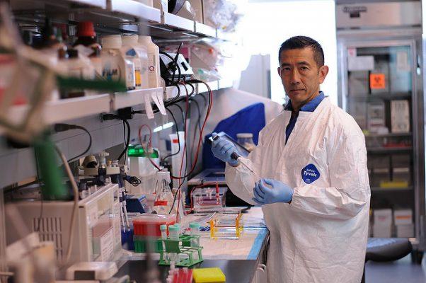 Dr. Shiramizu in his lab at JABSOM