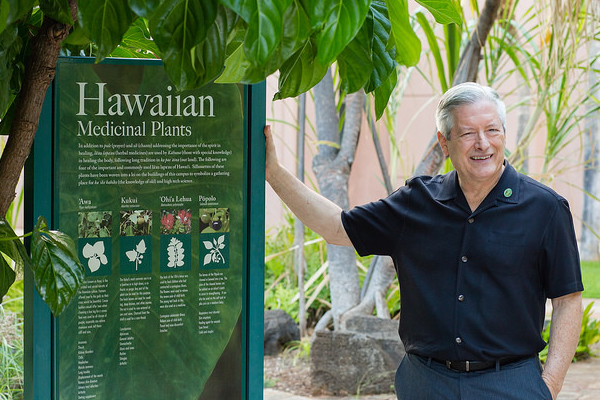 Dean Hedges is shown in the Native Hawaiian Healing Garden at JABSOM.