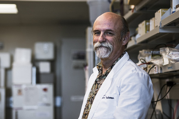 Dr. Robert Nichols in the lab at the Biosciences Building at the John A. Burns School of Medicine.