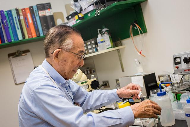 Yanagimachi in the lab.