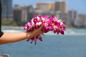 Holding an orchid lei near the shore of Magic Island.