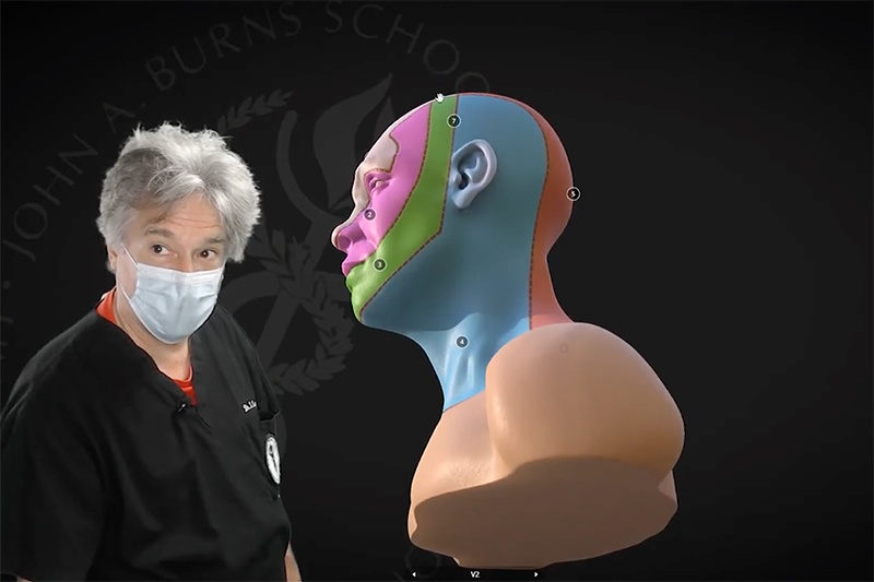 Dr. Lozanoff in front of a 3D anatomical structure